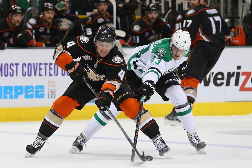 Dallas Stars Ducks Wildcat Movers